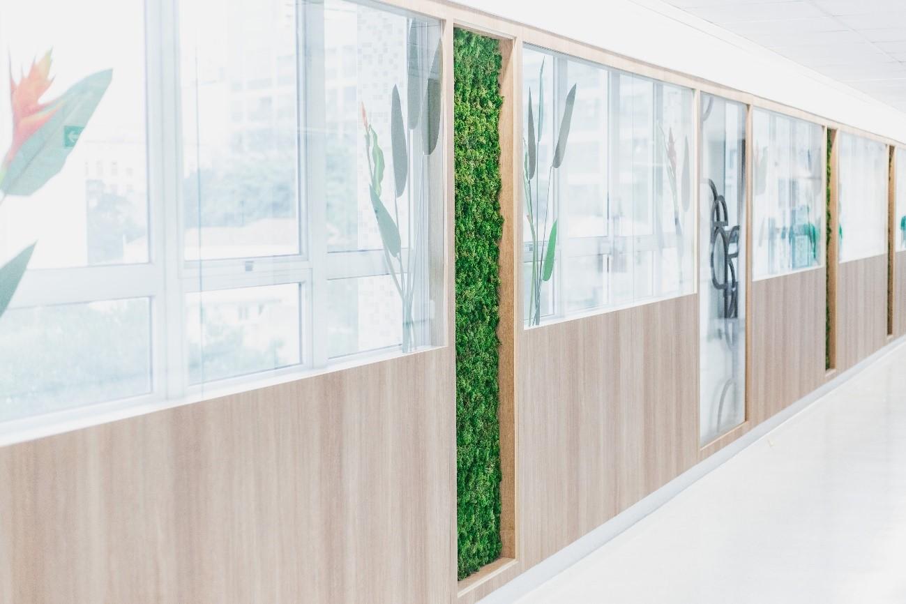 jardim vertical do hospital beneficiência portuguesa